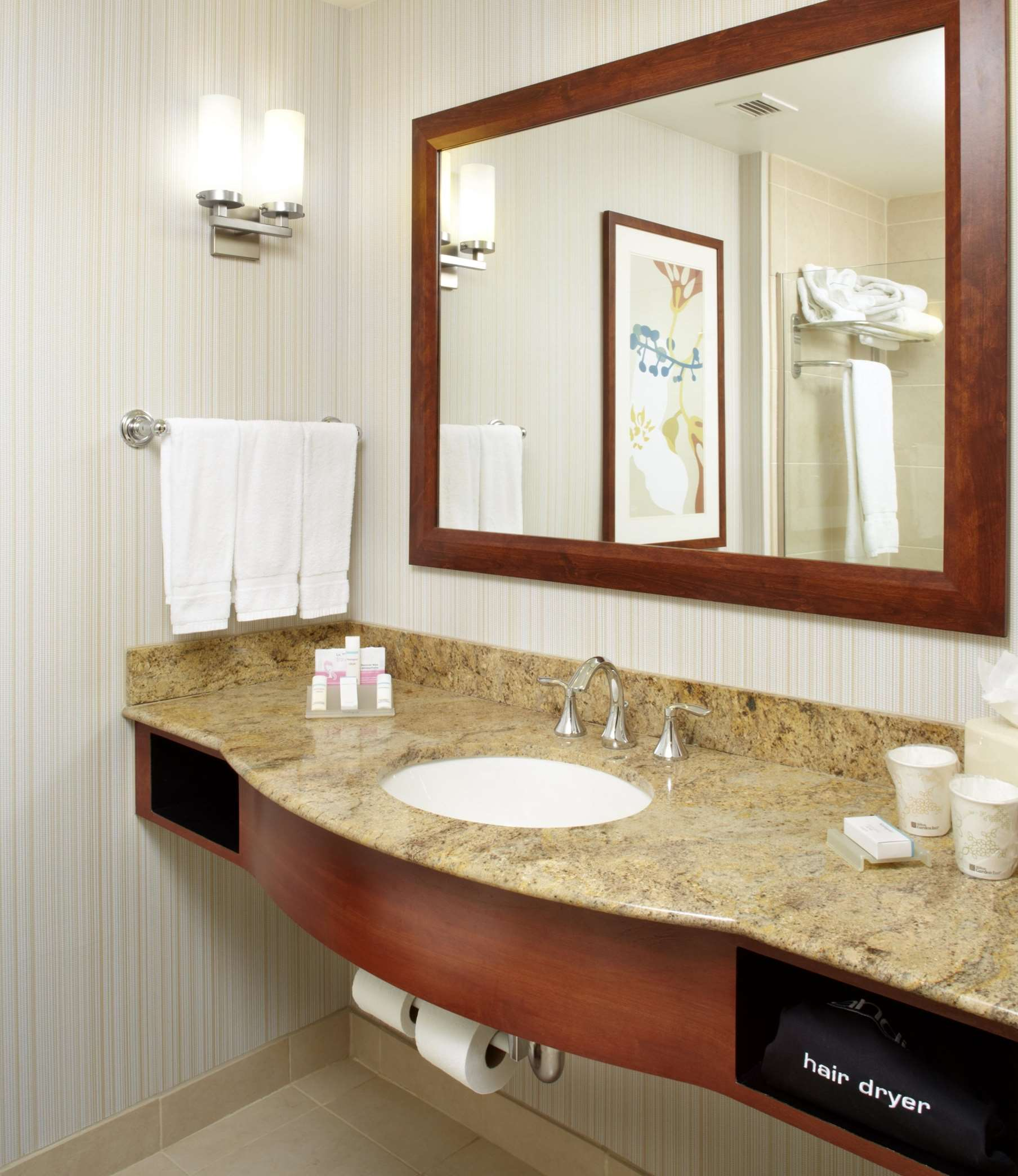 Hilton Garden Inn Dallas/Arlington image 38