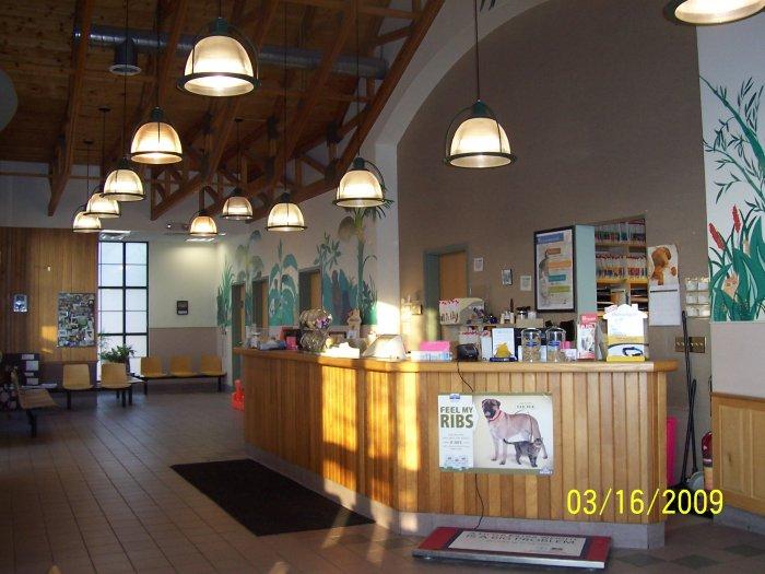 VCA Brown Animal Hospital image 4