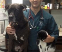 Queens Midway Animal Hospital in Flushing, NY, photo #7