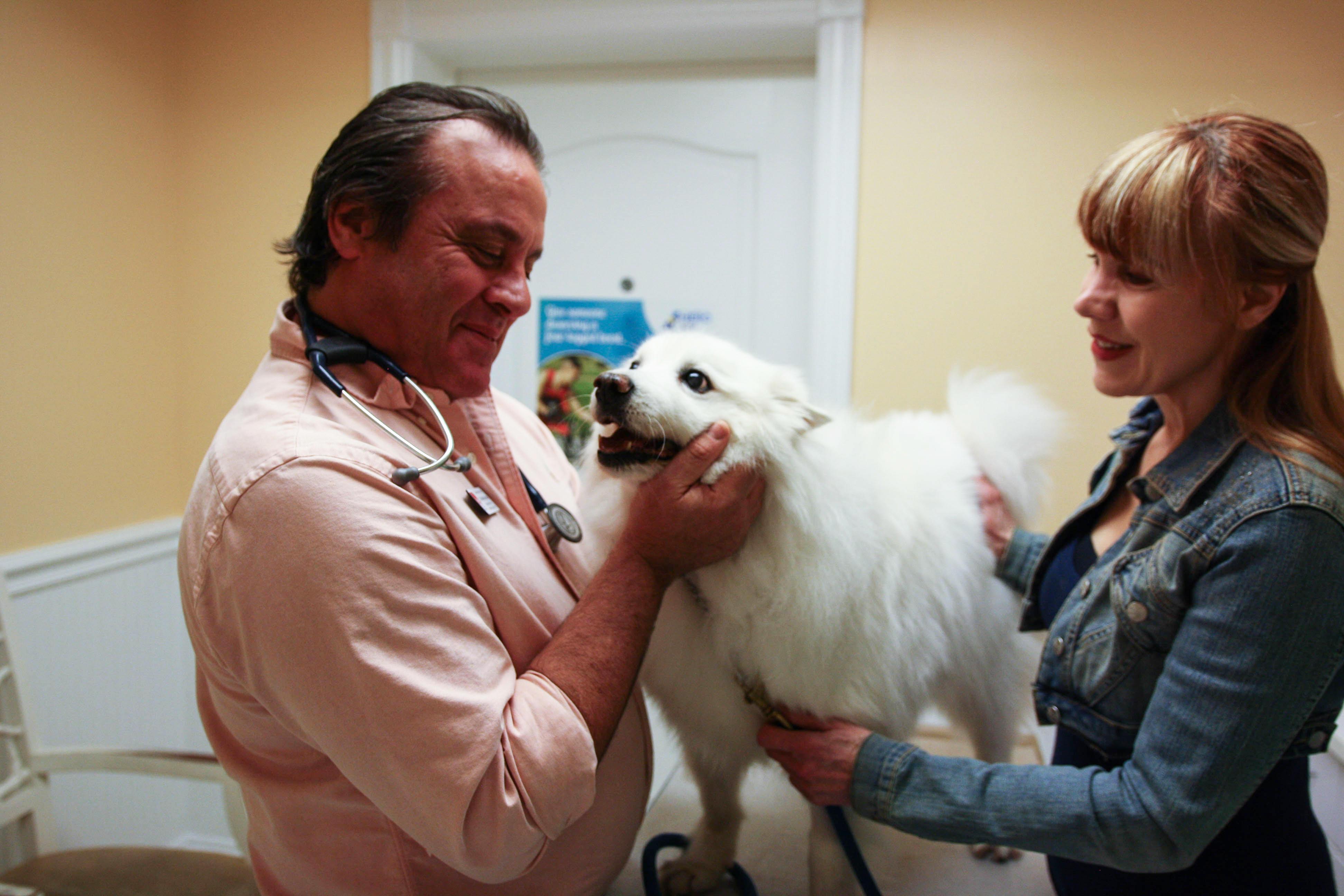 Calusa Veterinary Center in Boca Raton, FL, photo #17