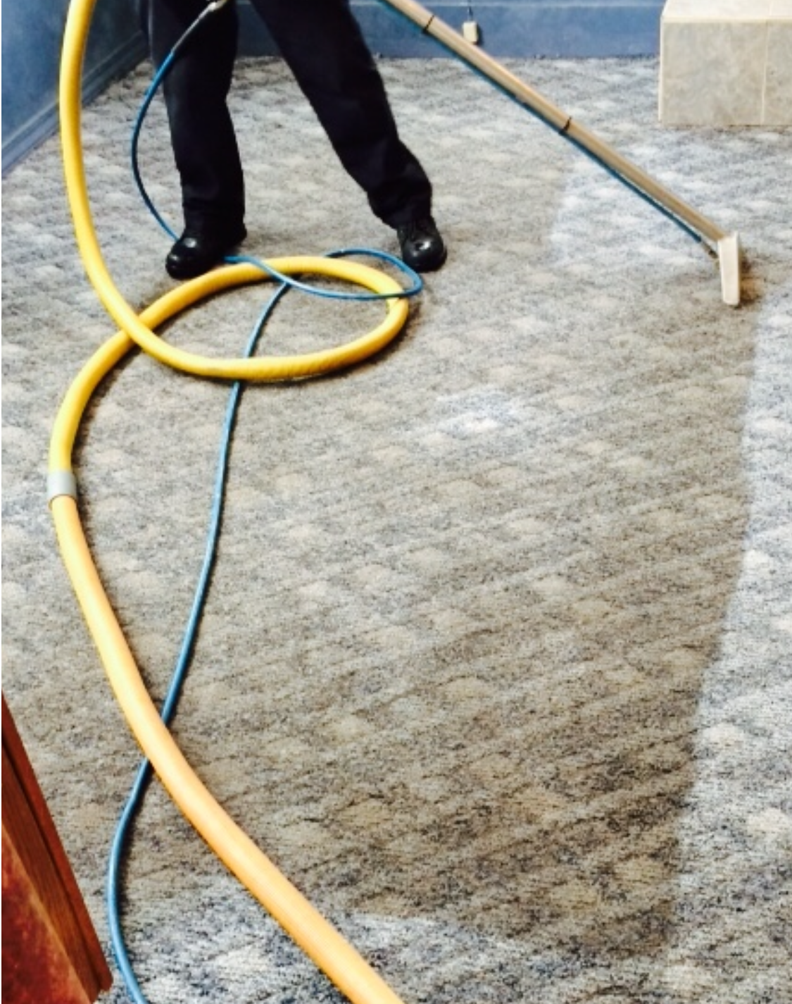Super Steamers Carpet Cleaners image 4