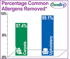 Mr. B's Chem-Dry image 3