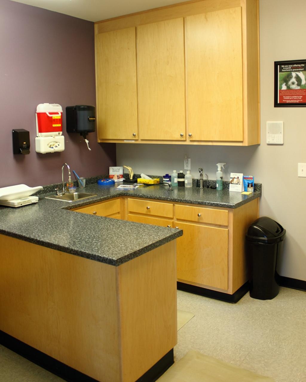 VCA Chestatee Animal Hospital image 1