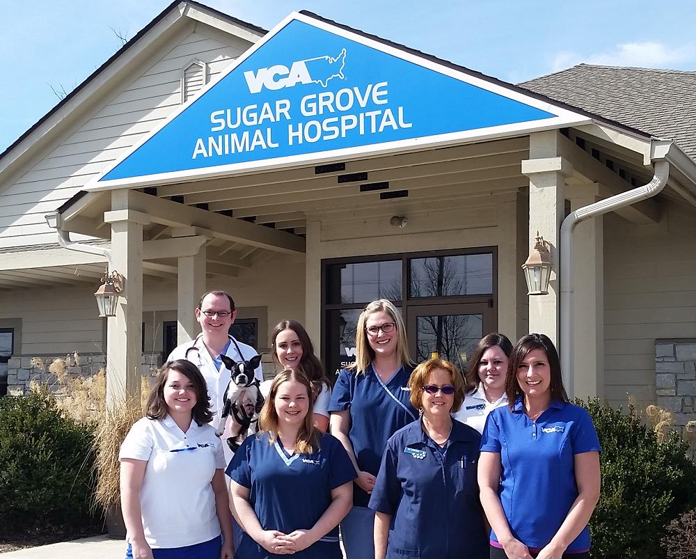 VCA Sugar Grove Animal Hospital image 4