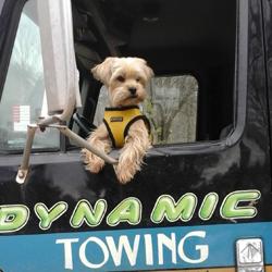 Dynamic Towing image 0