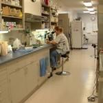 Adamson Veterinary Services - Salem, OH