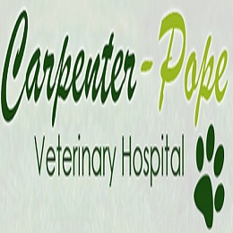 Dog And Cat Hospital Norfolk