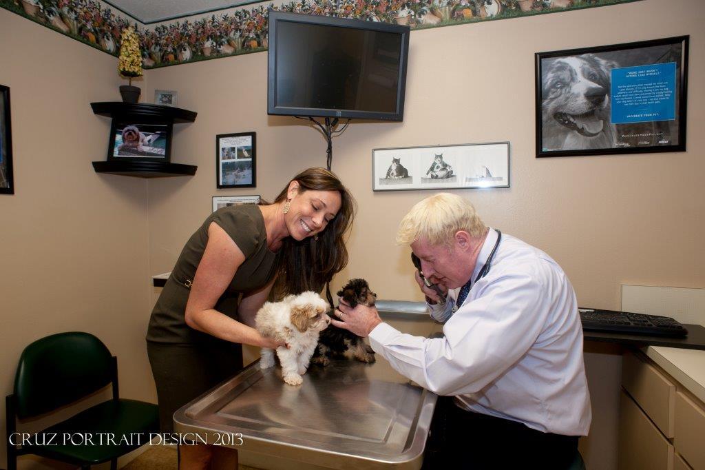 Sarasota Veterinary Center image 2