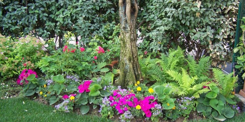 Il Prato - Giardiniere in Franciacorta