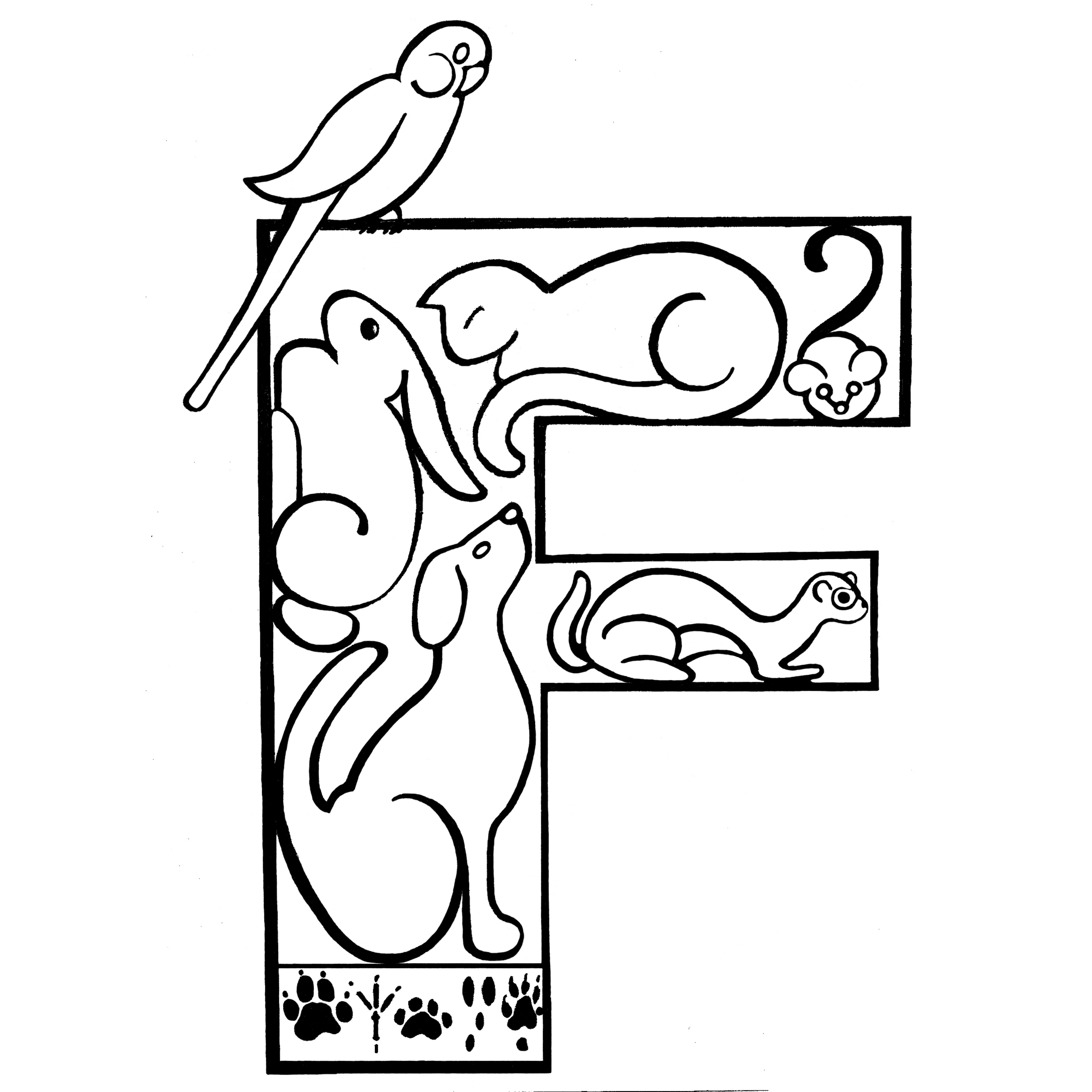 Fur and Feathers Veterinary Care