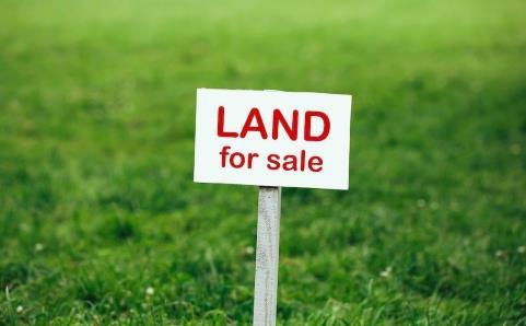 Brian Trainor Real Estate