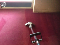 Image 7 | Queens Carpet Cleaning