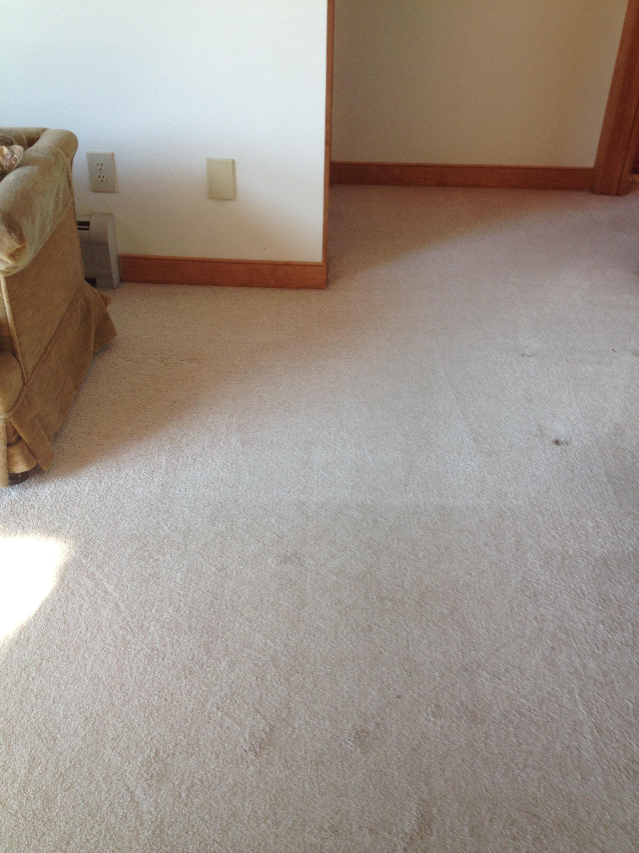 D&D Carpet Cleaning image 10