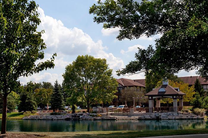 Windsor Park image 9