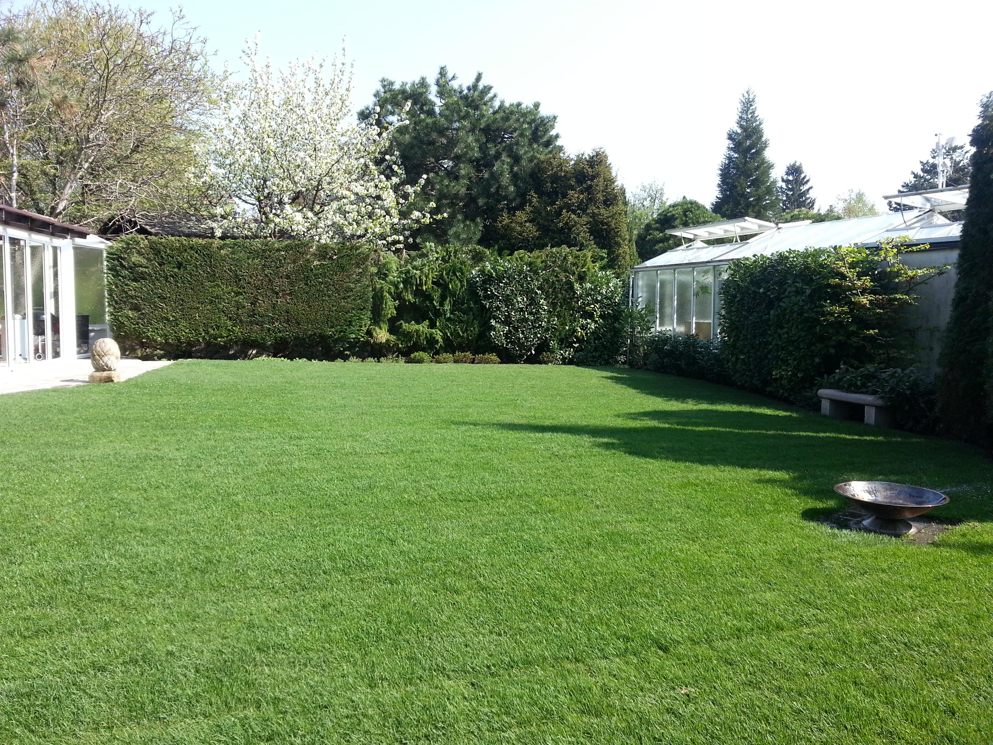 Ing gerold reischl gartengestaltung gmbh bauunternehmen for Gartengestaltung 1230 wien