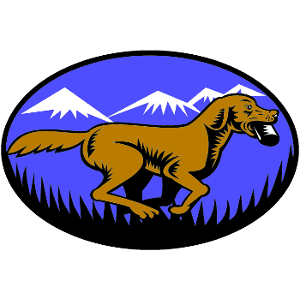 FetchMasters, LLC image 3
