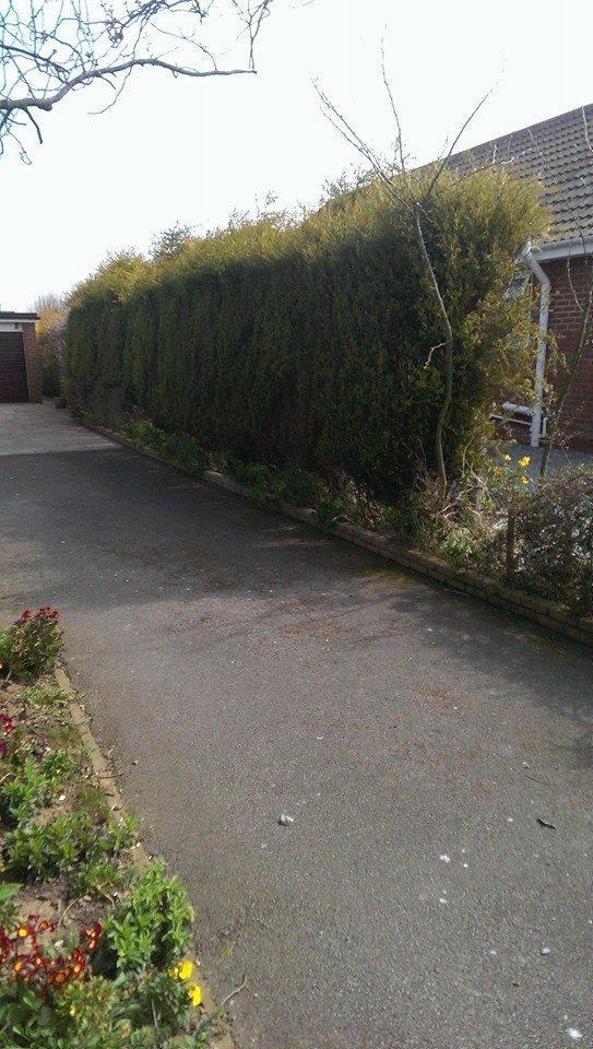 John gell gardening contractor landscape contractors in for Gardening contractors