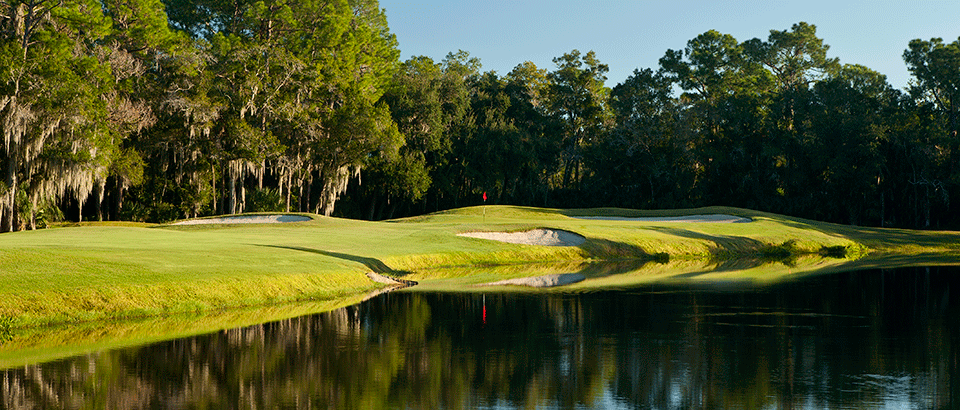 East Lake Woodlands Country Club image 0