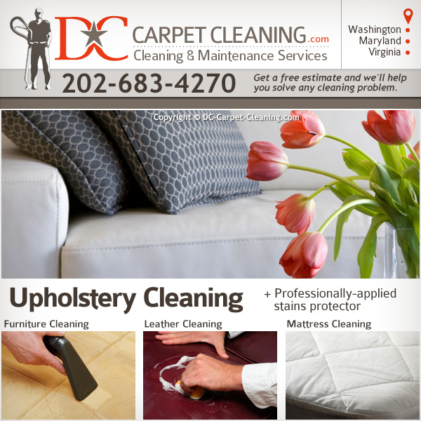 DC Carpet Cleaning image 7