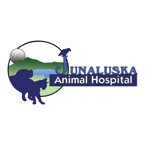 Junaluska Animal Hospital