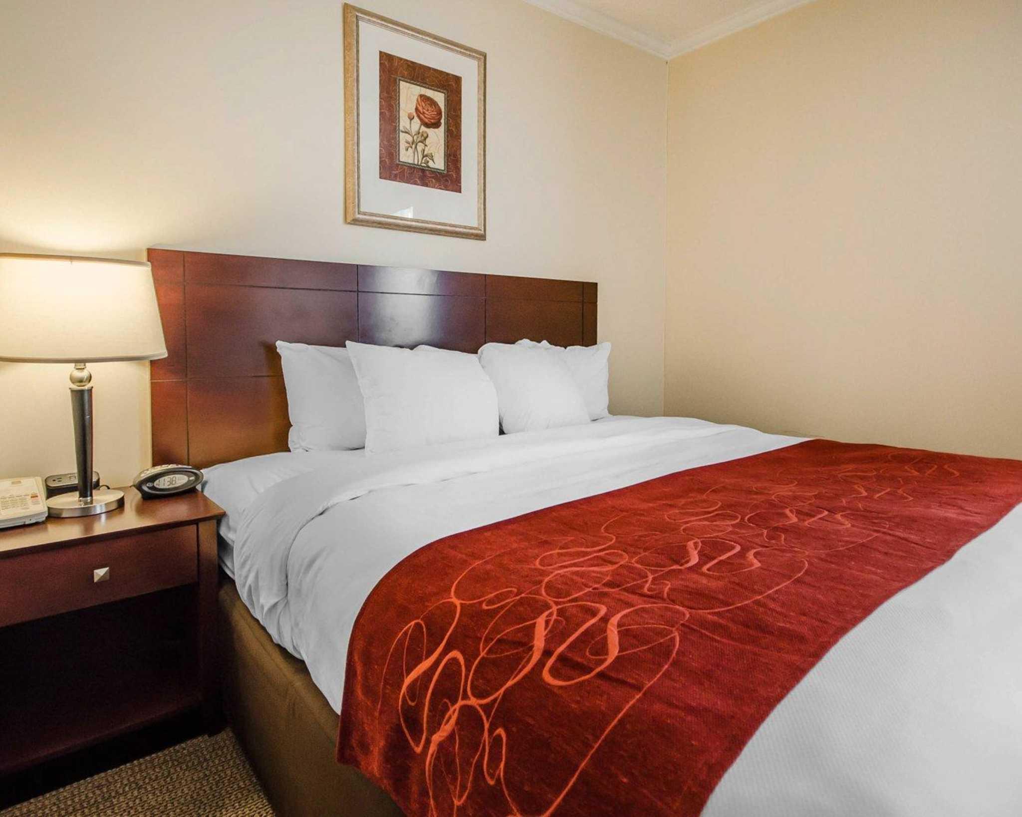 Quality Suites image 2
