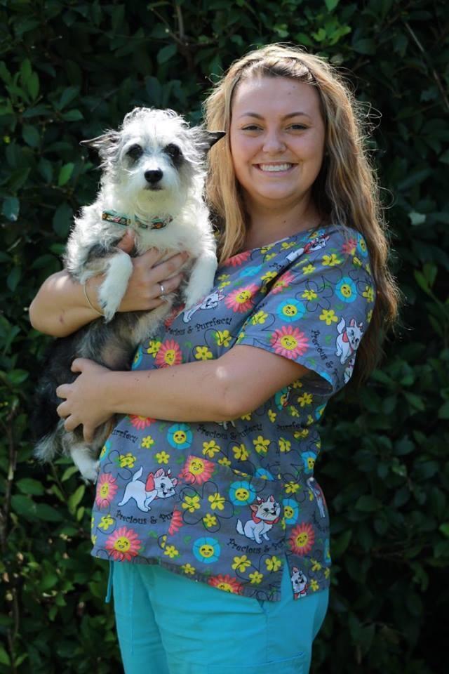 Houston Veterinary Clinic image 13