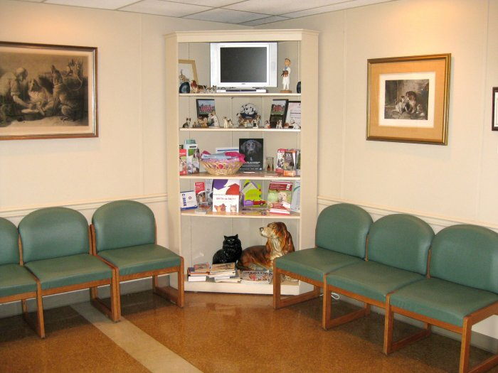 VCA Herndon-Reston Animal Hospital image 6