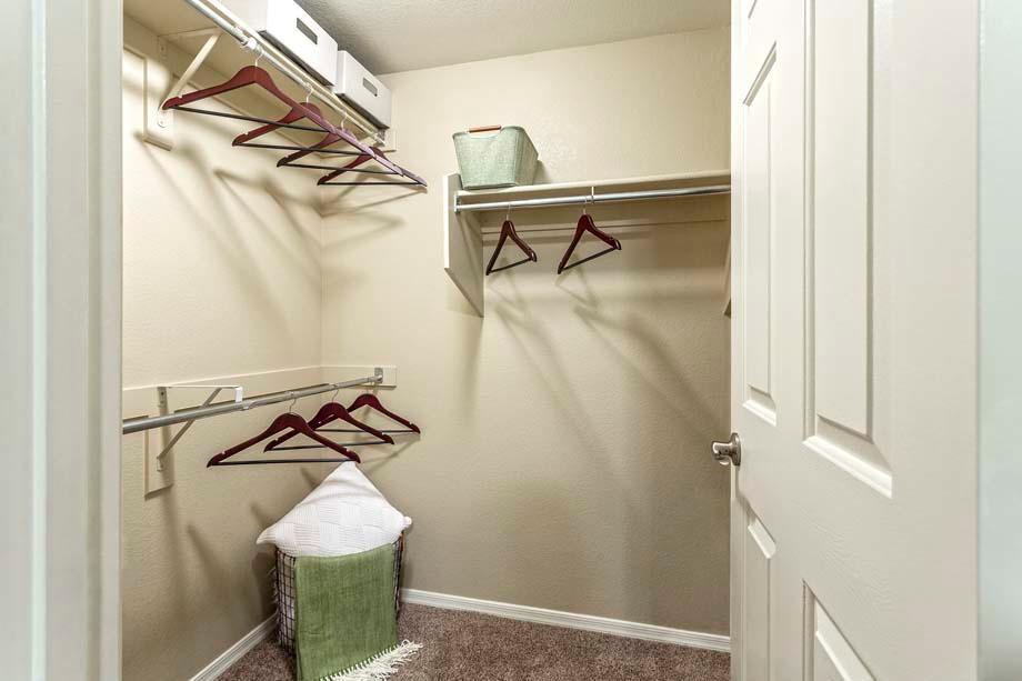 Camden Montierra Apartments image 7