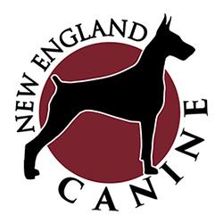 New England Canine image 13