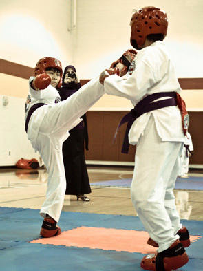 Fort Bend Taekwondo- Katy/Richmond, TX image 3