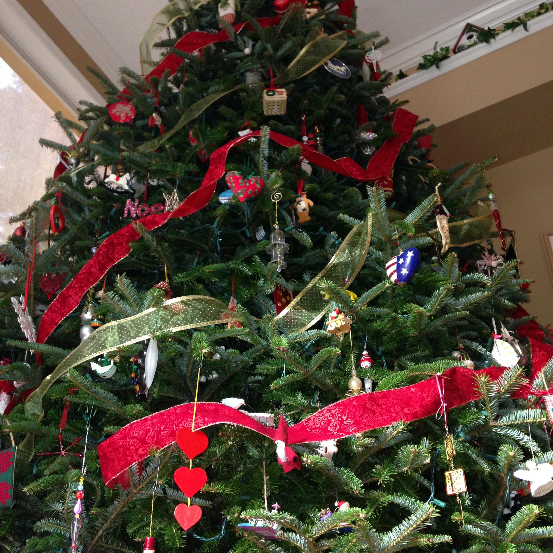 Dave's Christmas Tree Lot image 21