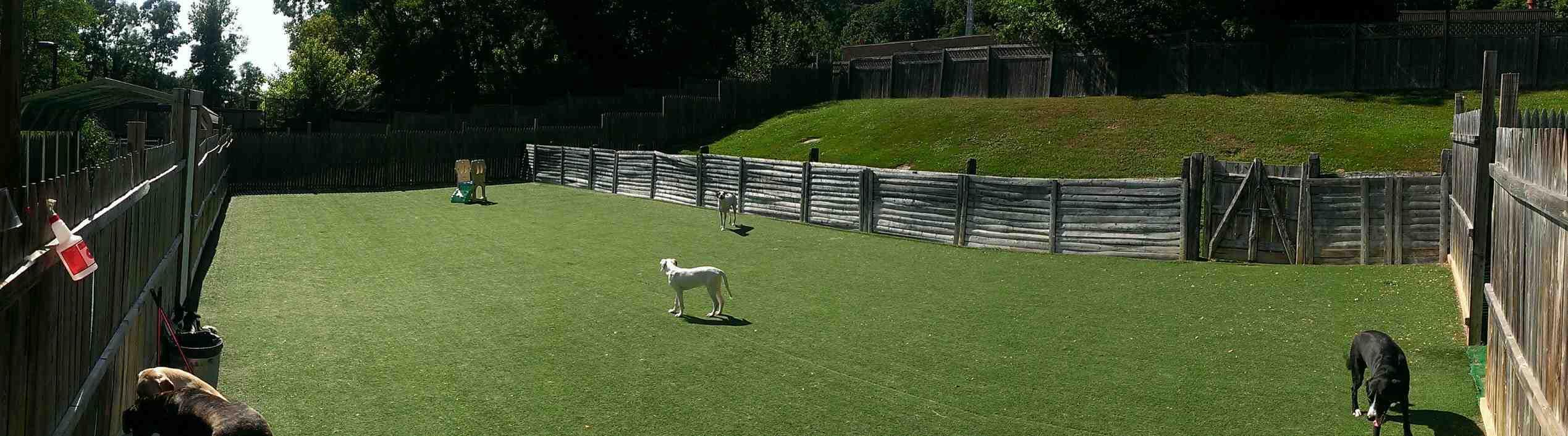 VCA Family Pet Resort image 5