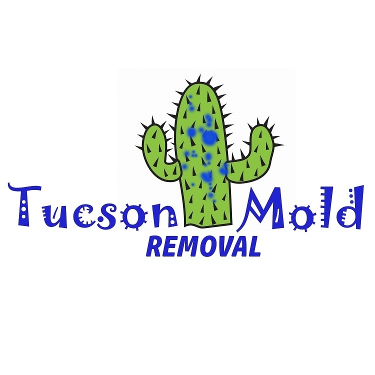 Tucson Mold Removal Pros