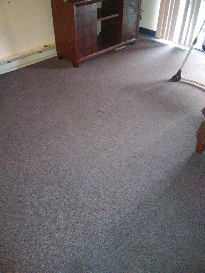 Excel Carpet Cleaning & Power Washing LLC