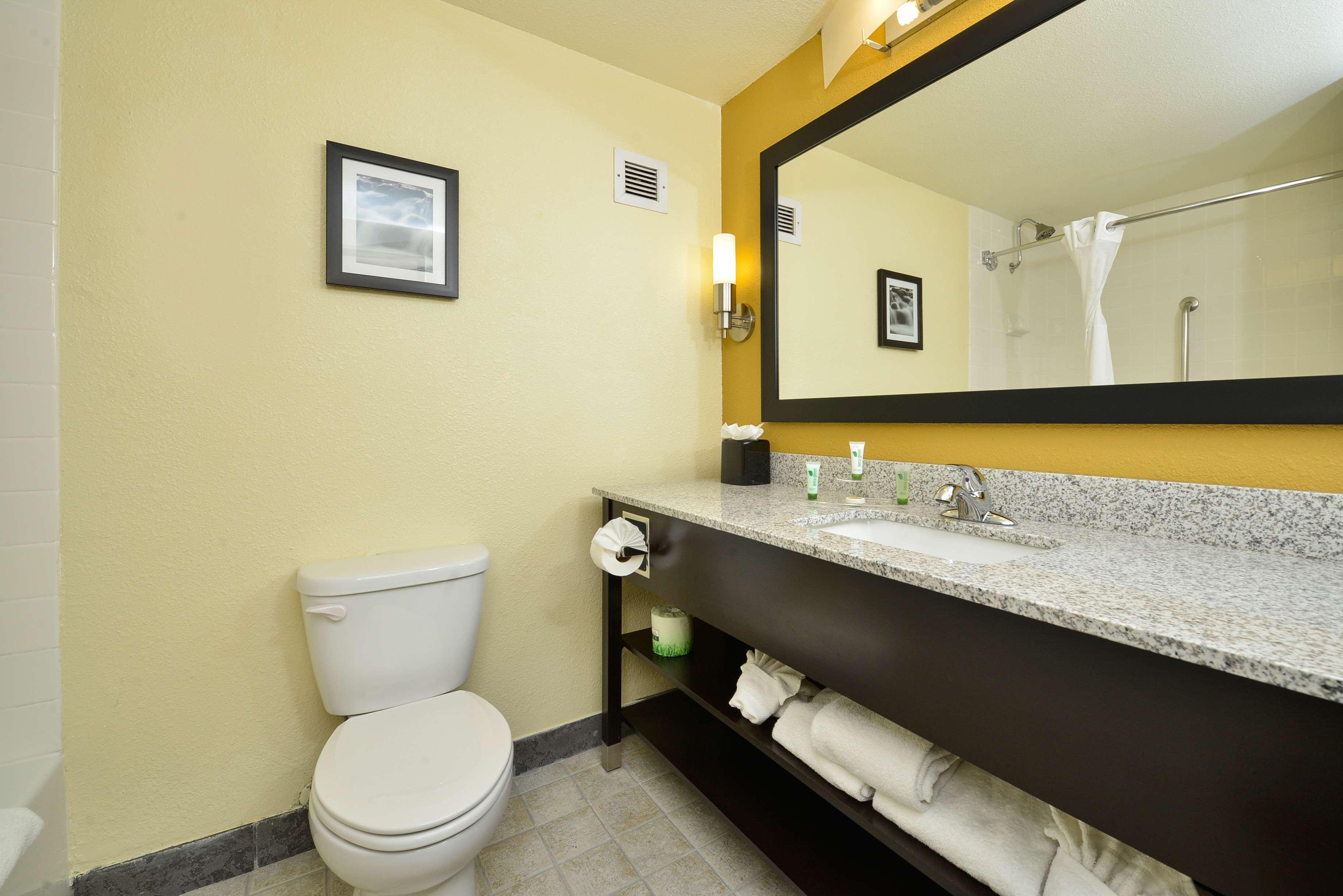 Best Western Plus Denver Tech Center Hotel image 27
