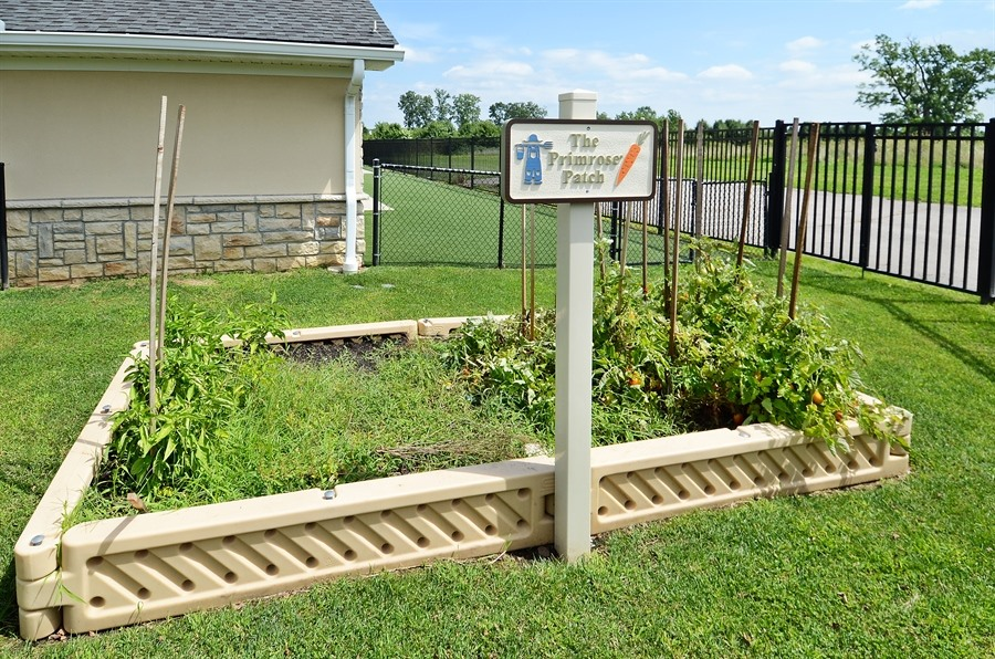 Primrose School at Golf Village image 5