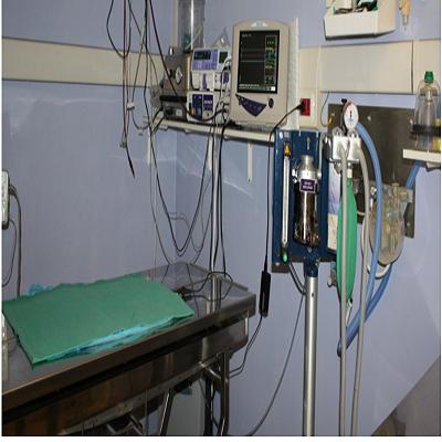 Clinica Veterinaria Parco di Monza