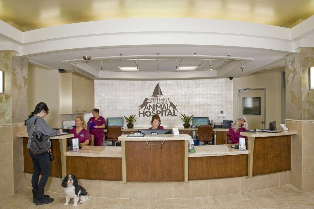 VCA Westlake Village Animal Hospital image 4