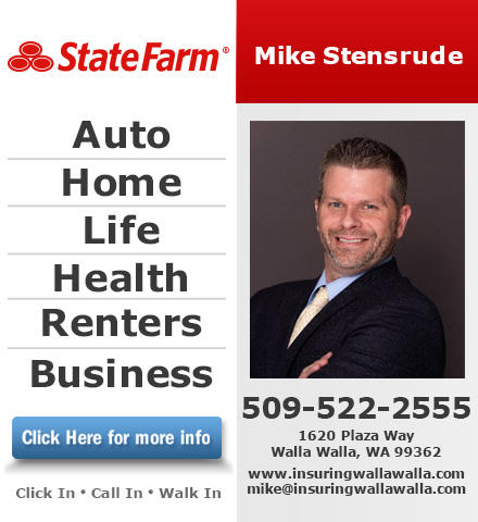 Mike Stensrude - State Farm Insurance Agent image 0