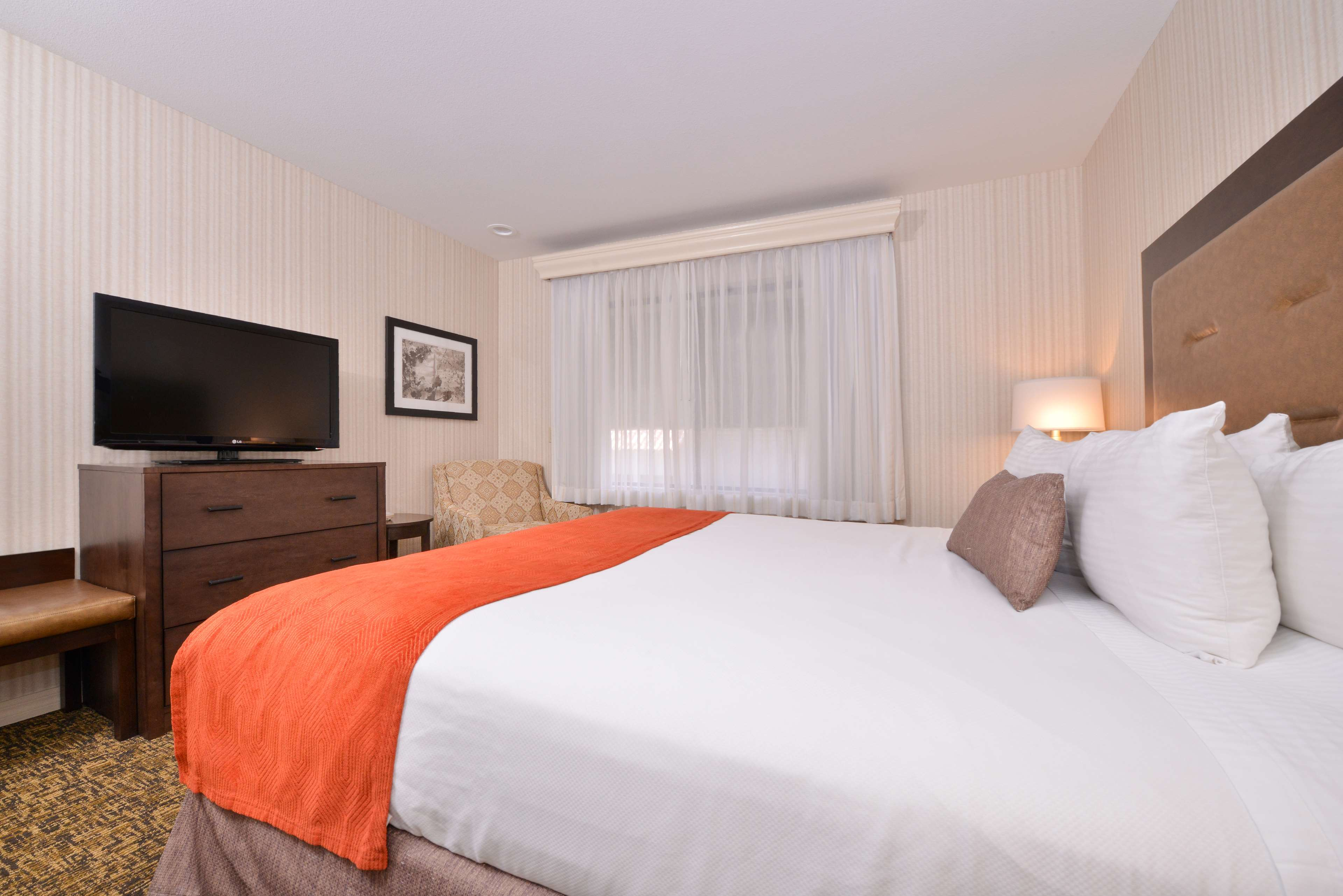 How To Find Out What Free Room Category Best Western