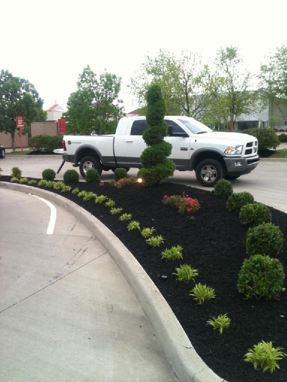 Landscaping Enhancements image 3