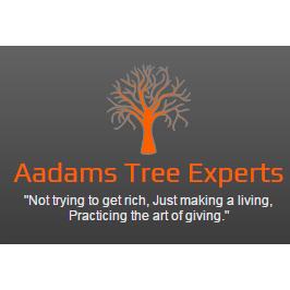 Aadams Tree & Landscape Experts