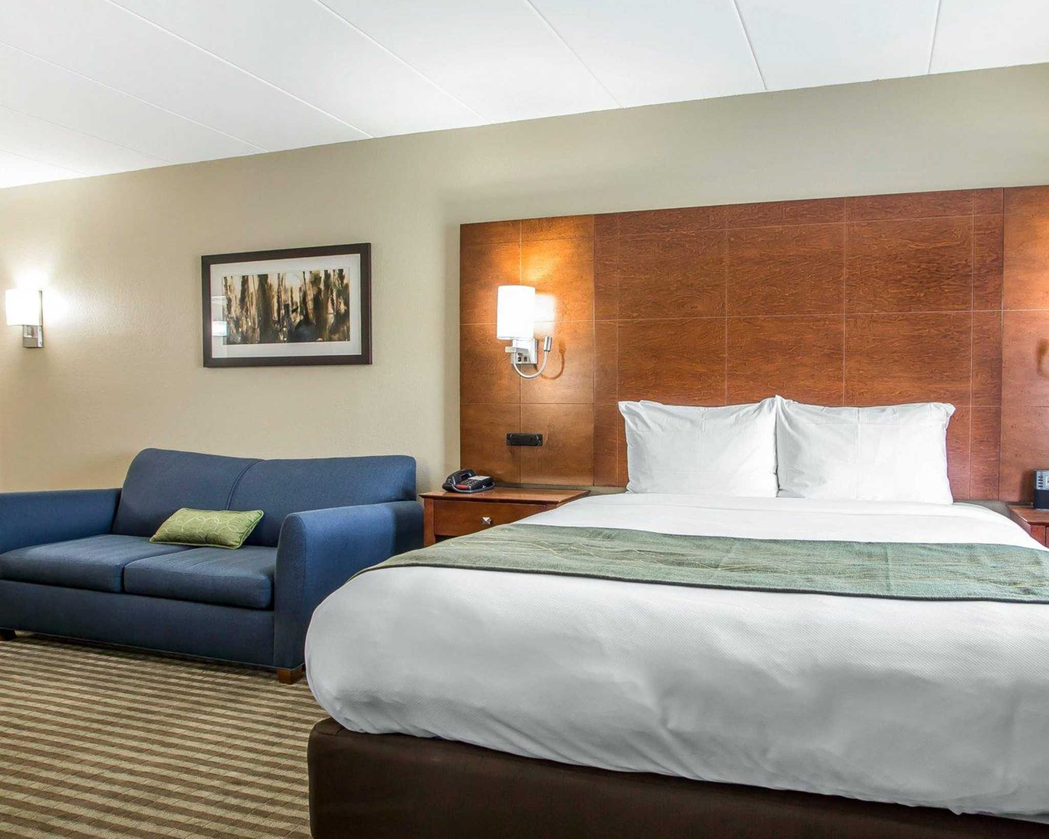 Comfort Inn image 46