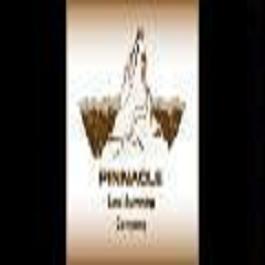 Pinnacle Land Surveying Co.