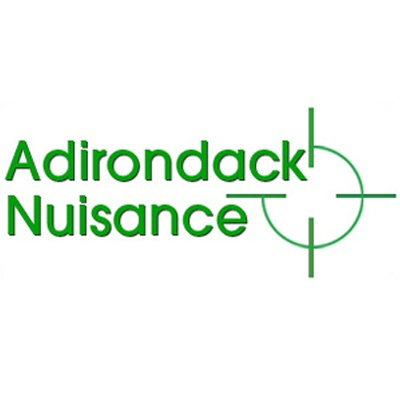 Adirondack Nuisance Wildlife and Pest Control - Hudson Falls, NY - Pest & Animal Control
