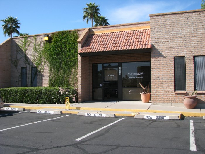 VCA McCormick Ranch Animal Hospital and Pet Care Center image 5