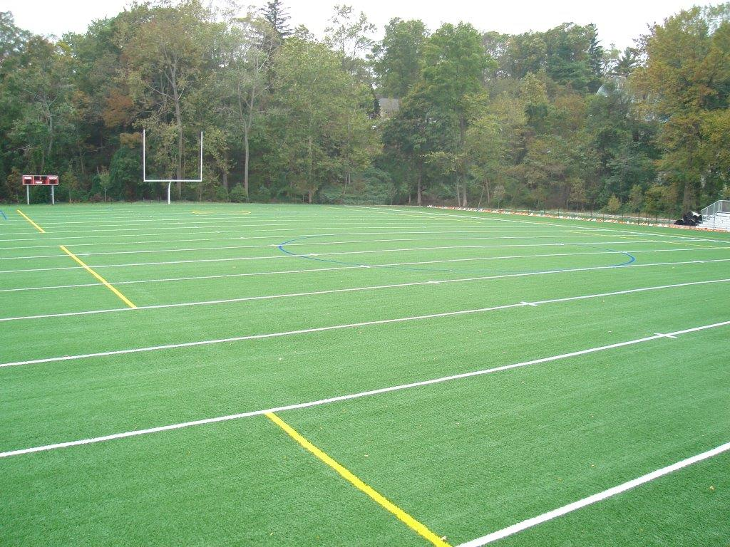 Artificial Turf Products image 5