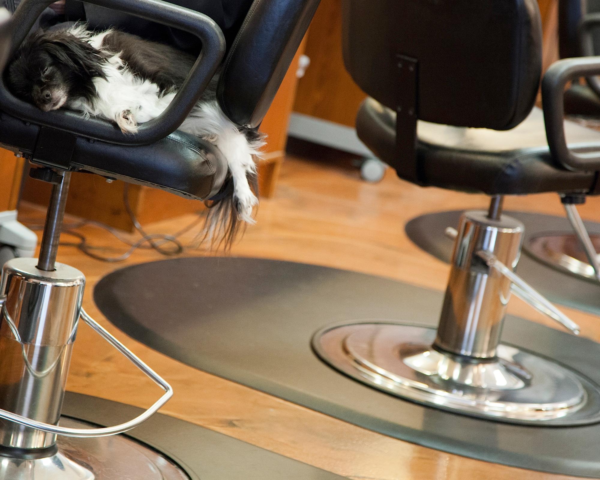 Layers Hair Salon image 5