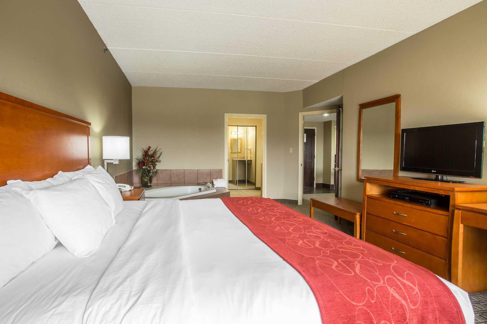 Comfort Suites Mountain Mile Area image 25