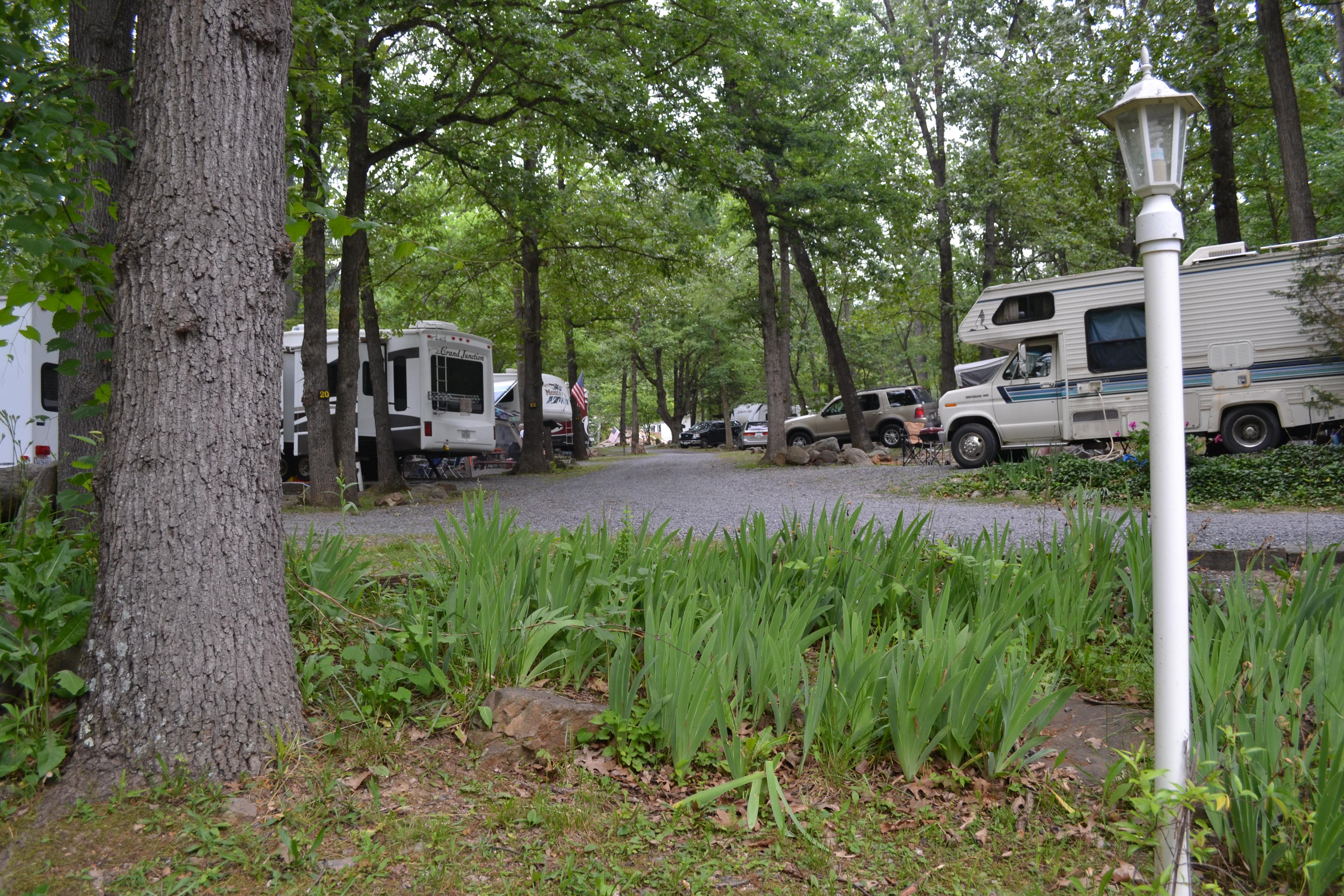 Harrisonburg / Shenandoah Valley KOA Holiday image 9
